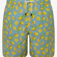 Sky Blue Lemon Print Swim Shorts