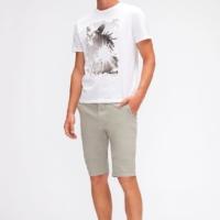 Grey Slimmy Chino Shorts Weightless